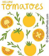 Yellow tomatoes collection, vector illustration