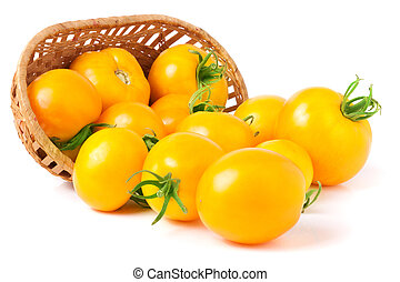 yellow tomatoes spilled from a wicker basket isolated on white background
