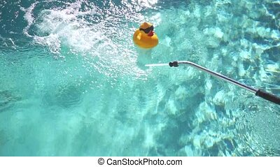Yellow Toy Ducky. - Toy ducky in the pool.