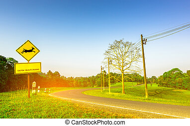 "Yellow traffic sign with deer jumping inside the sign and have message ""caution wildlife crossing"" at the curve asphalt road. Trees, electric pole in the forest with clear blue sky on summer"