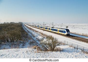 Yellow train in Dutch rural winter landscape of National Park Oostvaardersplassen
