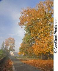 Yellow Tree, road, sunbeam, sunlight, fog