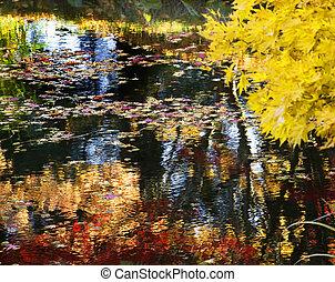 Yellow Tree Water Reflections Van Dusen Gardens