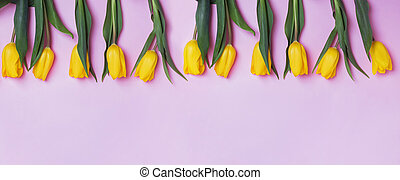 Yellow tulip flowers on pink background