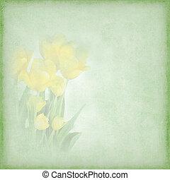 Yellow Tulip Graphic