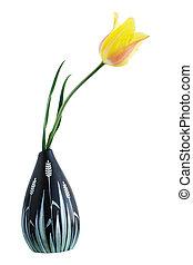 tulip in a vase