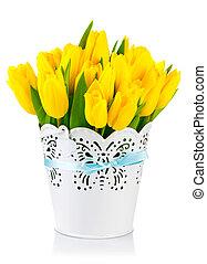 Yellow tulips in bucket