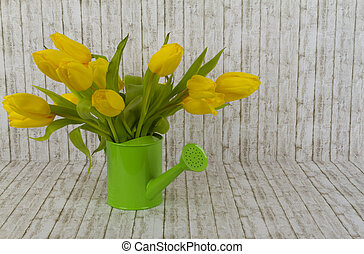 Yellow tulips in green watering can