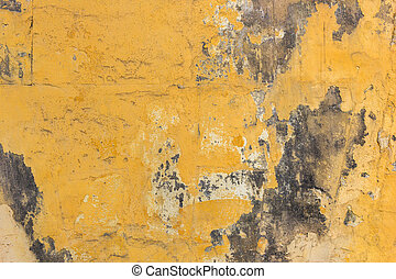 Yellow wall with mold background
