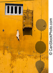 Yellow wall with small windows and bird cages