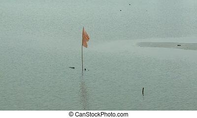 Yellow Warning Flag, Bukit Merah Lake, Malaysia - Medium...