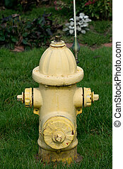 Yellow water hydrant