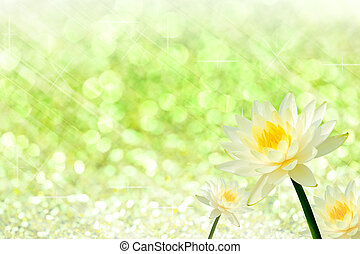 Yellow water lily on green of bokeh for design.