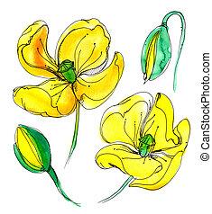Yellow watercolor poppy