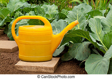 yellow watering can in vegetable garden