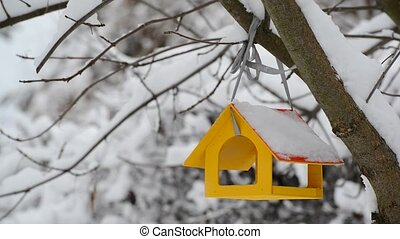 Yellow wooden bird feeder hangs on tree in winter.