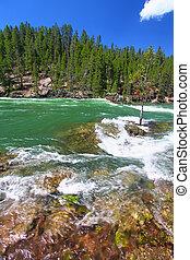 yellowstone ποταμός , καταρράκτης