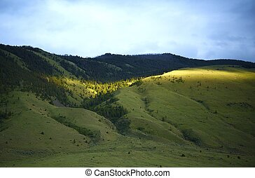 yellowstone, 綠色的小山