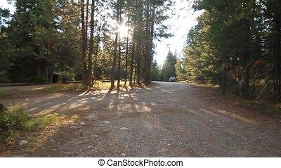 yellowstone, camping