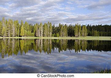 Yellowstone lake - reflection on the lake in Yellowstone ...