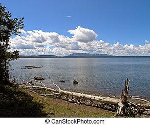 Yellowstone Lake with Driftwood