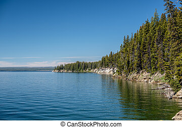Yellowstone Lake with forest landscape