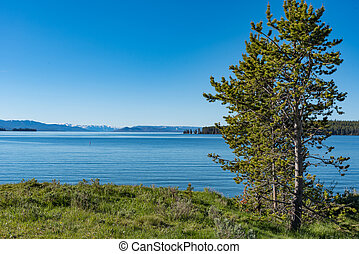 Yellowstone Lake, Wyoming - Yellowstone Lake viewed from ...