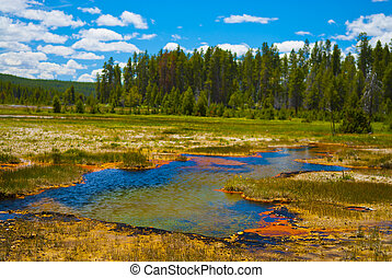 Yellowstone Landscape - Little steaming pond along the ...