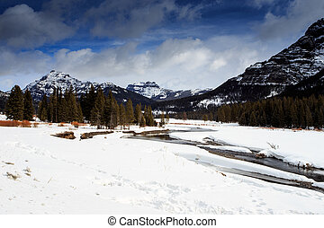 Yellowstone National Park Frozen Landscape. 7778