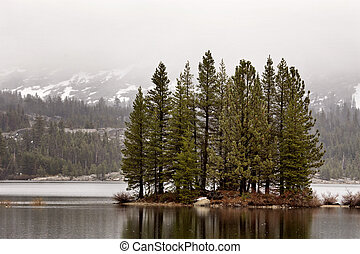Yellowstone National Park islad in a lake morning