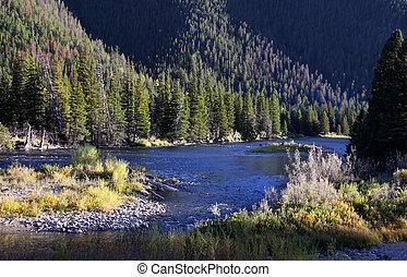 Scenic Yellowstone river area near west Yellowstone