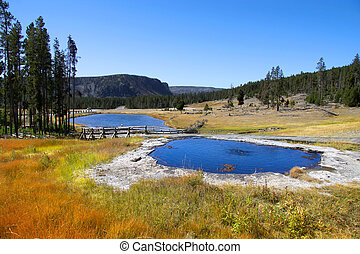 Yellowstone national park - Geyser near Gibbons falls in...
