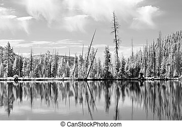yellowstone reflections in infrared