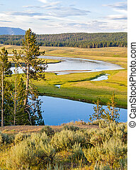 Yellowstone River in the Heyden Valley - The Yellowstone...