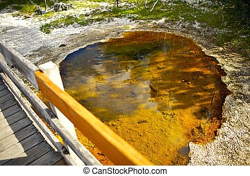 Yellowstone Toxic Grounds