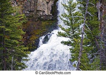 Yellowstone Waterfall