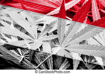 Yemen Flag on cannabis background. Drug policy. Legalization...