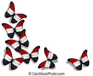 Yemeni flag butterflies, isolated on white background