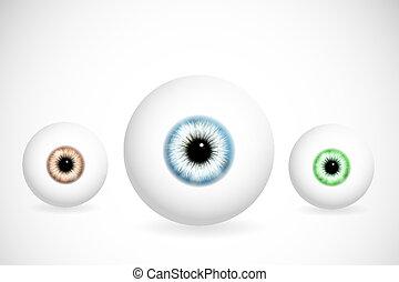 yeux, couleurs, différent