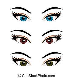 yeux, ensemble, (3), isolé, femme