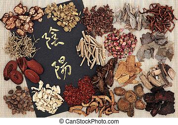 Yin and Yang Chinese Herbs - Yin and yang symbols with...