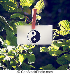 Yin and yang symbol on a white card hanging from a leafy green b