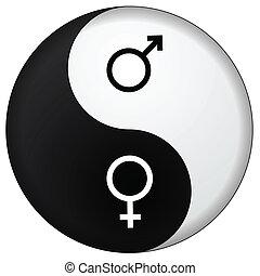 yin, macho, femininas, yang