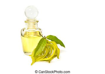 ylang-ylang, オイル, マッサージ, 香り