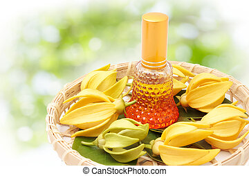 Ylang-Ylang flower, Yellow fragrant flower on nature ...