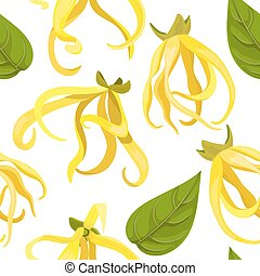 Ylang-Ylang tropical flower Cananga odorata . seamless pattern vector