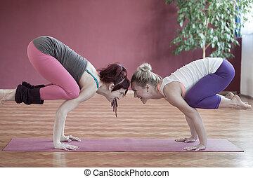 yog, グループ, 練習する, 若い女性たち