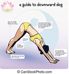 YOGA a Guide to Downward Dog - Visual aids proper execution...