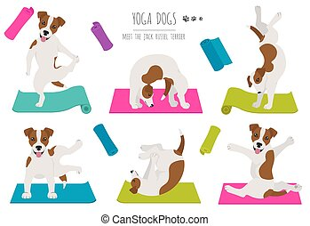 Yoga dogs poses and exercises poster design. Jack Russel terrier clipart. Vector illustration