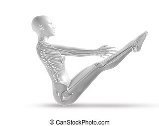 yoga, esqueleto, figura, médico, postura, hembra, 3d